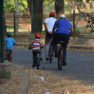 Cubbon_park_cycle_1