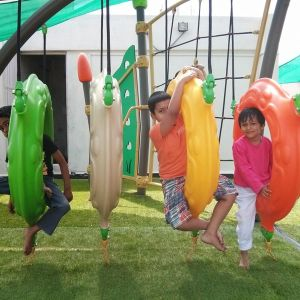 birthday party venues, PlayGym, Kalyan Nagar, swings, play areas