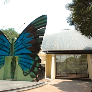 Bannerghatta National Park - Butterfly Park - Entrance