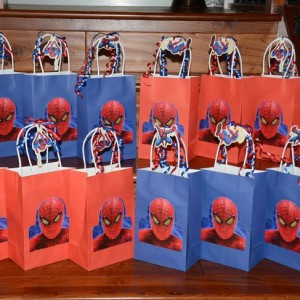Celebrium-Return-Gift-Spideman-Theme
