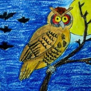 Bangalore Lalit Kala Kshetra Oil Pastel Owl