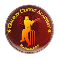 Gaurav Cricket Academy Logo