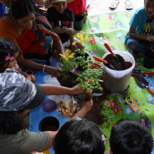 Honey Bees Nature Club Gardening Workshop Session