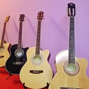 Eardrums_Jayanagar_Guitar_Instument