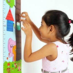 Flintobox, Educational Activity Box, Height chart