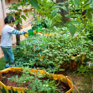 Kids enjoy Gardening at Little Lamps