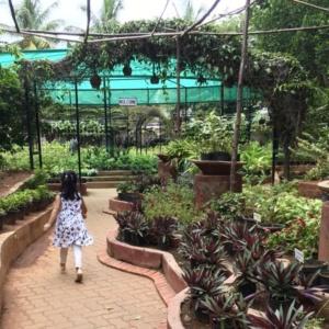 Indiranagar_nursery_01