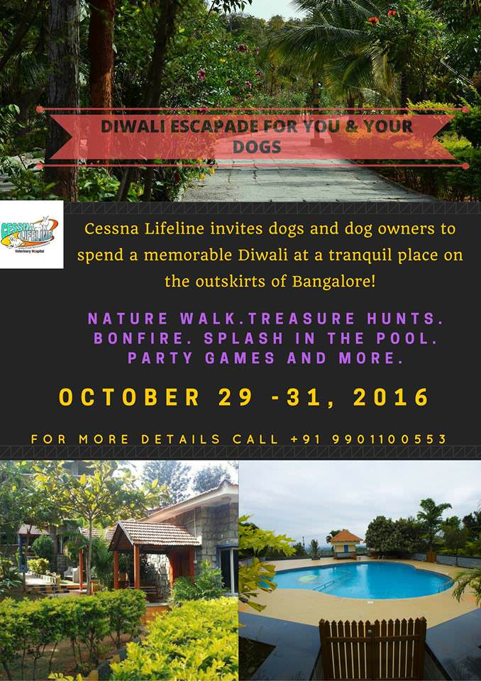 Diwali Escapade For You And Your Dog Bangalore