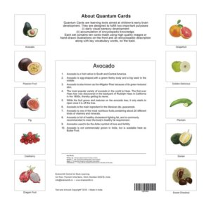 Brainsmith Fruit Picture Card for Children