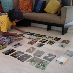 Child learning through Early Bird Flash Cards
