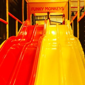 Four Lane Slide at Funky Monkeys Orion Mall