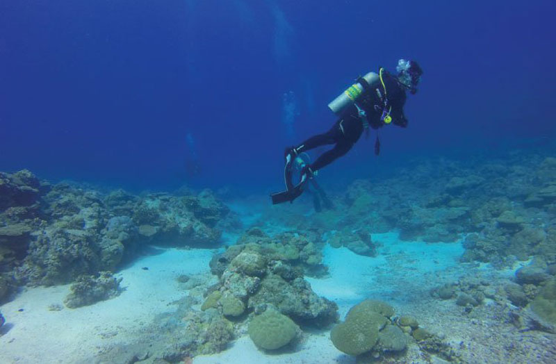 Diving in Pondicherry
