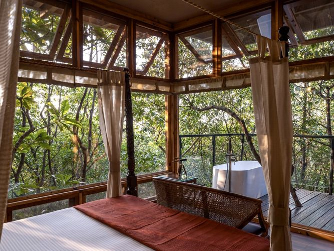 tree_house_the_machan