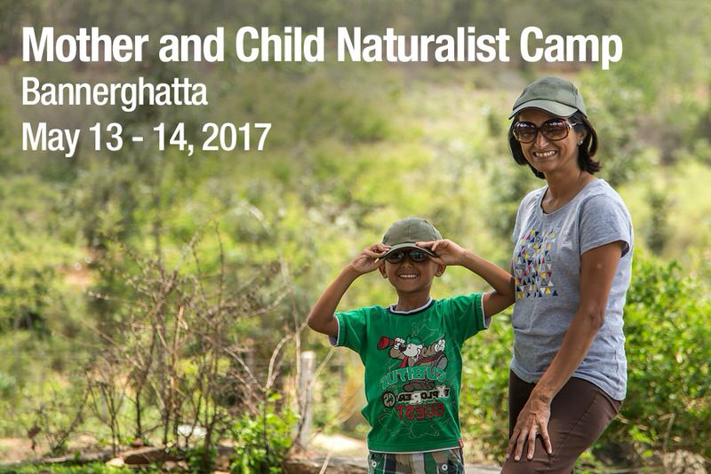Mother and Child Naturalist Camp Cover Image