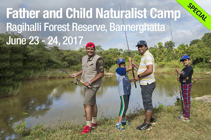 Father Child Naturalist Camp Cover Image