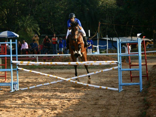 horse_riding_equestrian_center_for_excellence