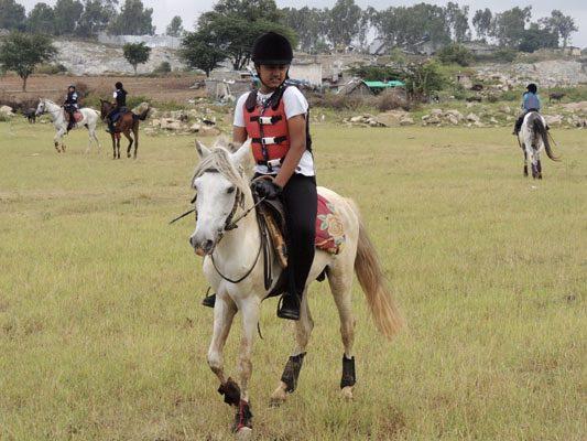 horse_riding_bangalore_horse_riding_school