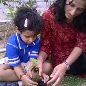 kunskapsskolan_agronomy_option_2