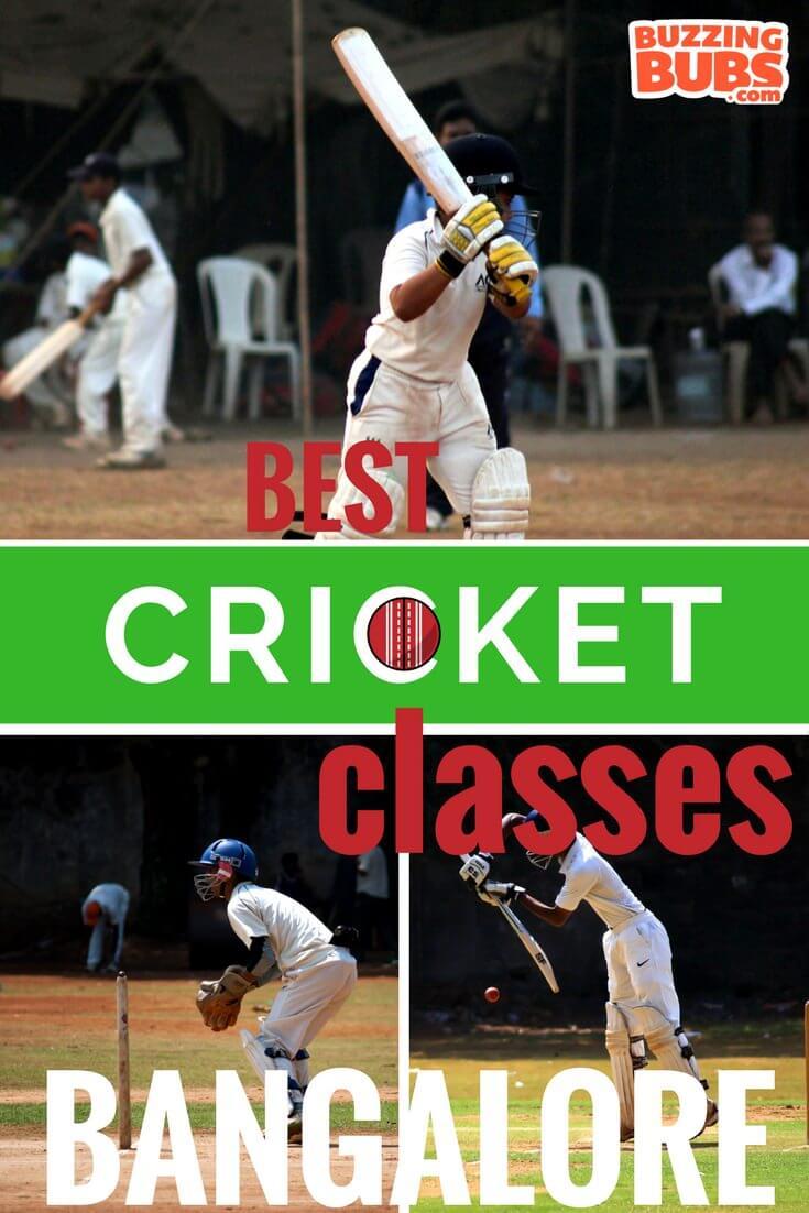 cricket_pinterest