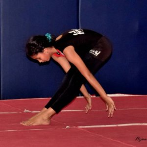 Gymnastic Coaching