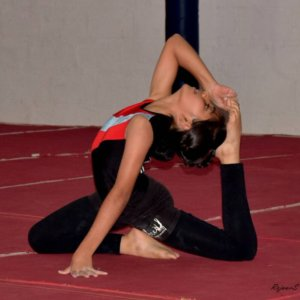 Nirvana Gymnastic Coaching