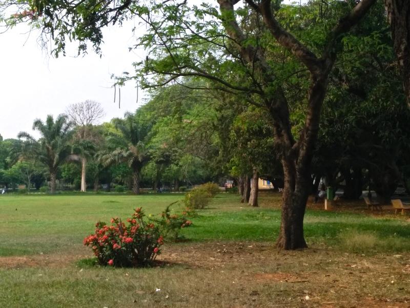 lalbagh botanical garden, grassy, knoll
