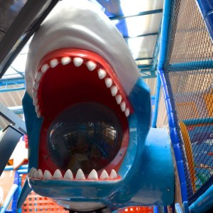 GuBacheez, HSR Layout, Shark, play areas