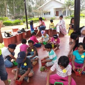 Gardening Workshop at Little Green Horns