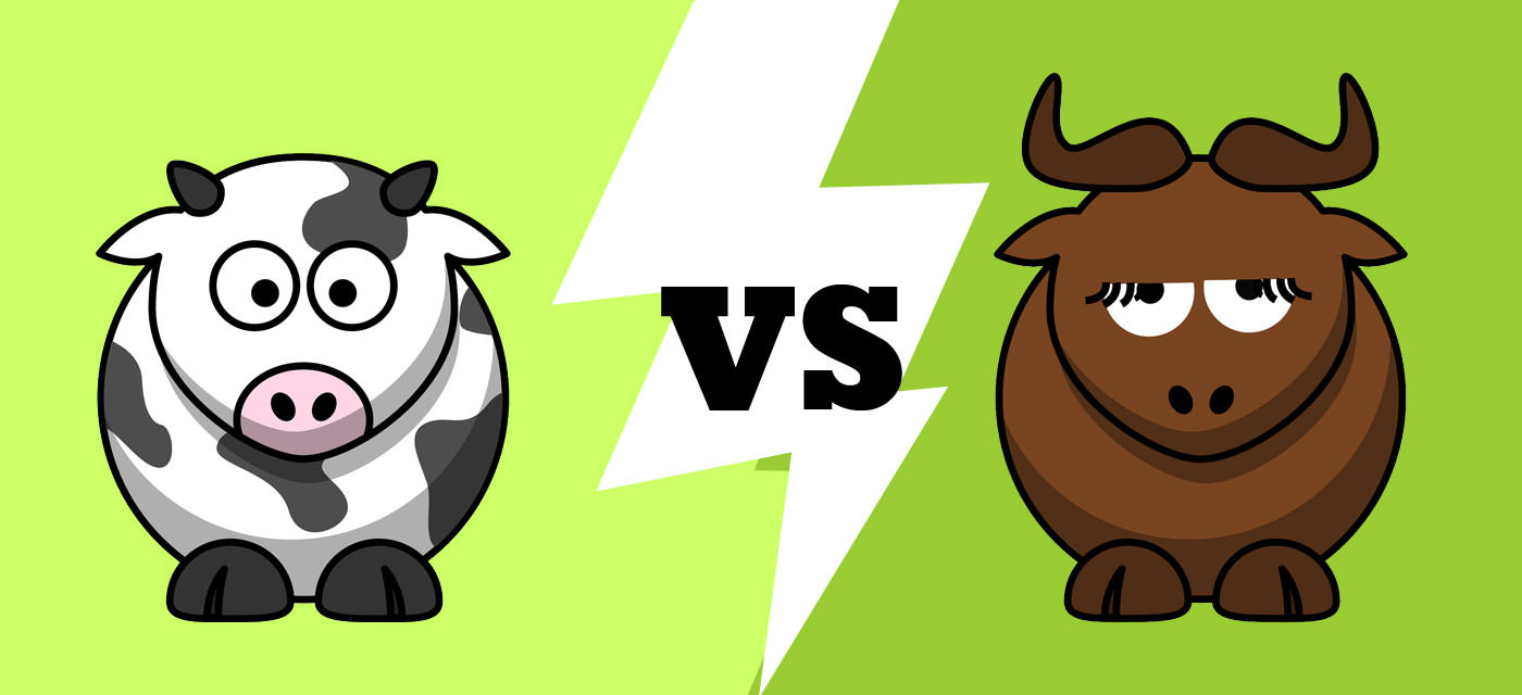 Cow's milk vs Buffalo milk for babies Cover Image