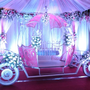 kids birthday party planners in bangalore, princess chariot party