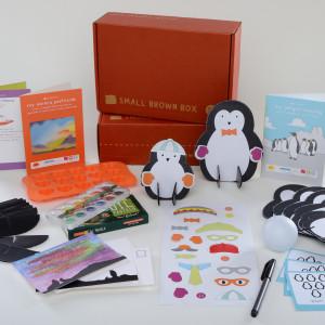 Small Brown Box DIY Penguin Box