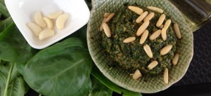 Pesto sauce, pesto dip, pesto spread, raw vegan foods