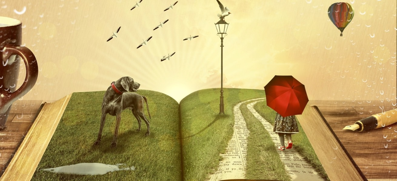 12 ways to let imagination lead the way Cover Image