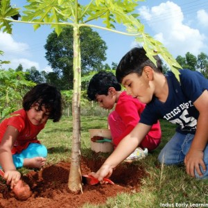 Indus Early Learning Centre-Whitefield-Planting a tree