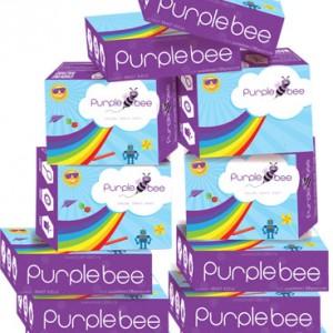 Purple Bee 12 months subscription activity box