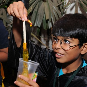 ScienceUtsav-Harry-Potter-Birthday-Party-Activity