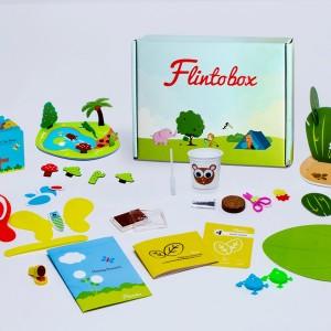Flintobox, Educational Activity Kit