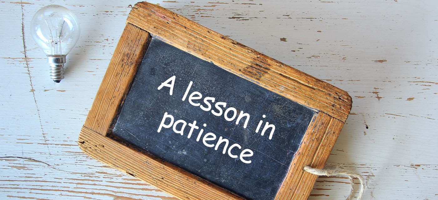 Toddler talk: A lesson in patience Cover Image