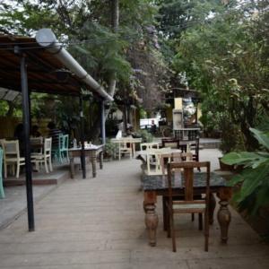 Kid_Friendly_Restaurant_Rogue_Elephant_01