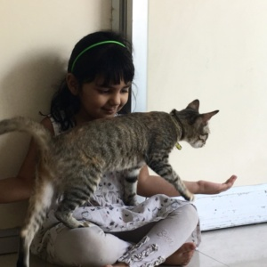 Indiranagar_the_cat_studio_03