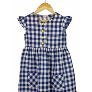 Blue Checks Dress