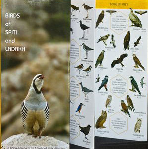 Early Bird Pocket Guide Spiti