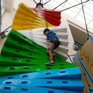Clip 'n Climb Climbing Ladder