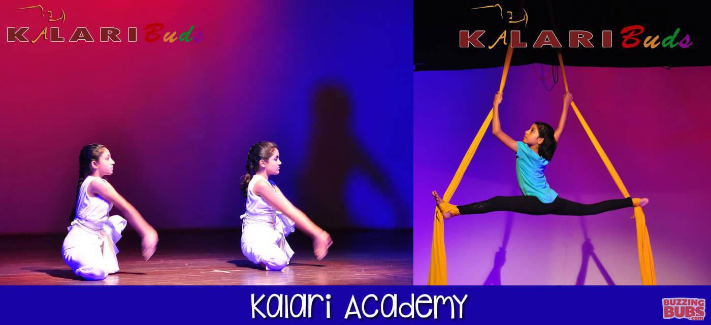 bb_central_kalari_academy