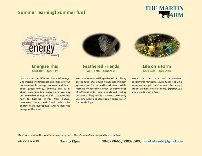 Summer Fun at The Martin Farm Cover Image