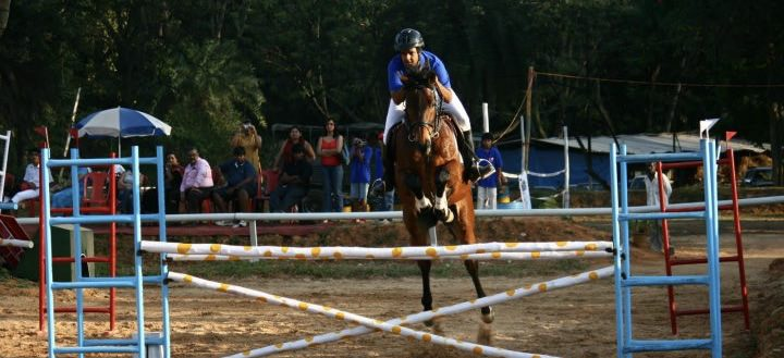 Top 5 Horse Riding Schools in Bangalore for your Kids Cover Image