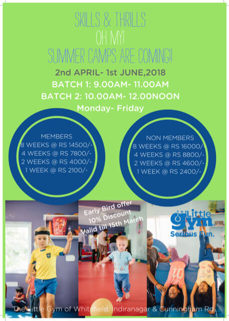 Summer Camps at The Little Gym Cover Image
