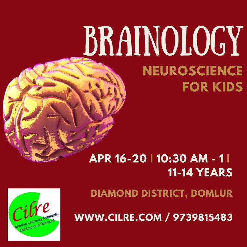 Brainology: Neuroscience for Kids Cover Image