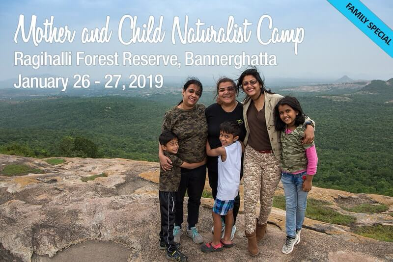 Mother & Child Naturalist Camp Cover Image