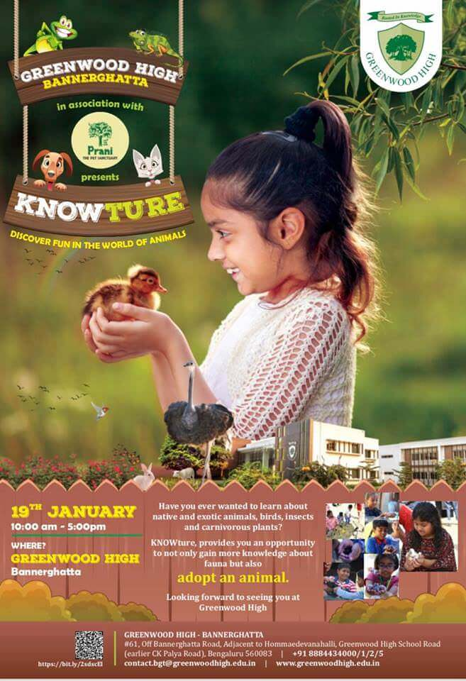 Knowture at Greenwood High Cover Image